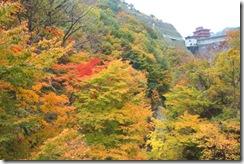 image-ooisikouyou1