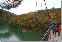 image-takanosukouyou2